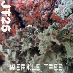 [Jt25] Merkle Tree