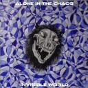 [-Alone In The Chaos-] Invisible World