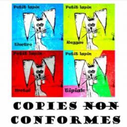 [Paris-Cayenne] Copies (non) conformes