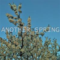 [Xian] Another Spring