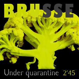 [Brusse] Under quarantine (2'45)