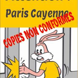 [Paris - Cayenne] Copies non conformes
