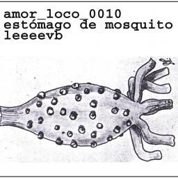 [Leeeevb] amor_loco_0010_._estómago_de_mosquito