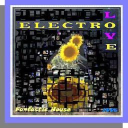 [Fantastic House] ElectroLove