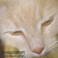 [Zanex Dissociation] Association