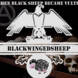 [blackwingedsheep] When the blacksheep become vulture
